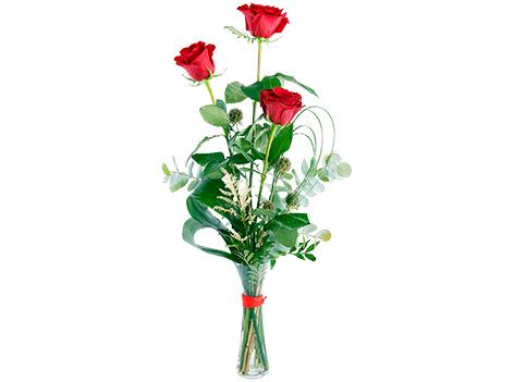 3 rosas rojas de tallo largo