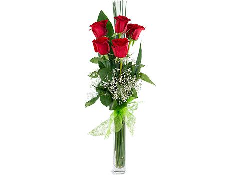 Arreglo de rosas rojas de tallo largo
