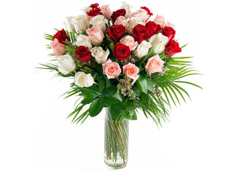 Enorme ramo de 36 rosas de tallo largo