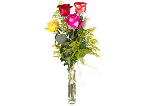 Arreglo de 5 rosas multicolor de tallo largo