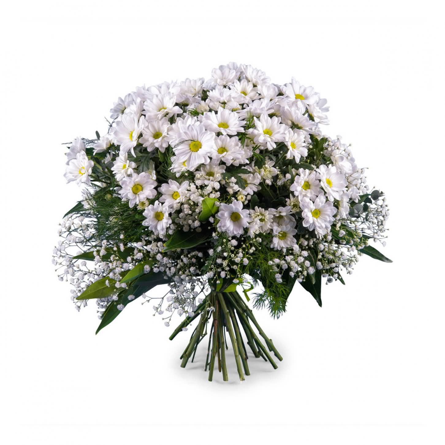 Flores De Feliz Cumpleanos Para Una Hermana Interflora