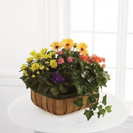 The FTD® Gentle Blossoms™ Basket, The FTD® Gentle Blossoms™ Basket
