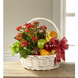 THE FTD® GARDEN'S PARADISE™ BASKET, THE FTD® GARDEN'S PARADISE™ BASKET