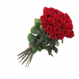 Bunch of 21 Red Roses, Bunch of 21 Red Roses