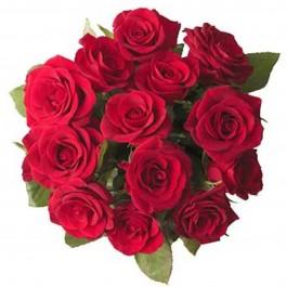 12 red roses without filler, 12 red roses without filler