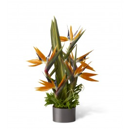 Tropical Bright Arrangement, BB#C21-4874 Tropical Bright Arrangement