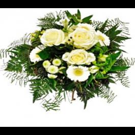 White blossomdream, White blossomdream