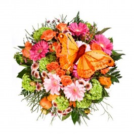 Beautiful colourful bouquet with butterfly, BY#EE602 Beautiful colourful bouquet with butterfly