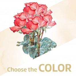 12 rosas de tallo large, CH#12RL 12 rosas de tallo large