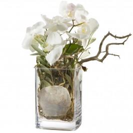 Des orchidées, autrement vase inclus, CH#CHN49458 Des orchidées, autrement vase inclus