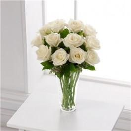 Rosas blancas, CO#S3-4308 Rosas blancas