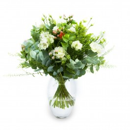 The Elegance Of White Flowers, The Elegance Of White Flowers