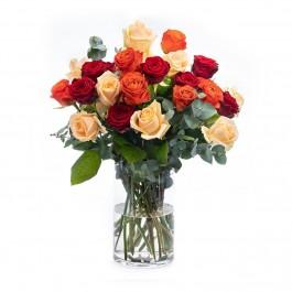 Kisses & Roses, Kisses & Roses