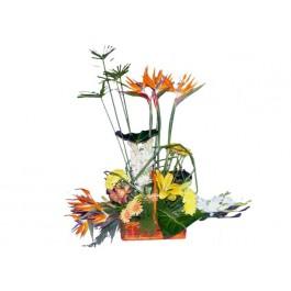 Arreglo de flores cortadas, EG#EG1024 Arreglo de flores cortadas