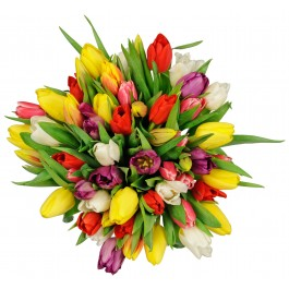 Seasonal Tulips Bouquet, Seasonal Tulips Bouquet