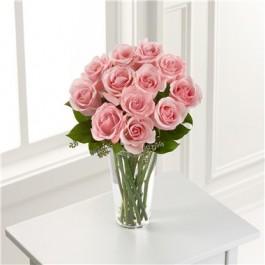 Pink Rose, GT#S21-4304 Pink Rose