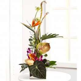 Exotikus luxus virágtál, Exotikus luxus virágtál