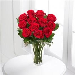 Roses Rojas, JM#12RR Roses Rojas