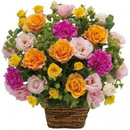 Arrangement of multicolored flowers, Arrangement of multicolored flowers
