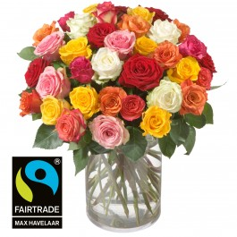 Bouquet of Roses (36 Roses) with Fairtrade Max Havelaar-Rose, Bouquet of Roses (36 Roses) with Fairtrade Max Havelaar-Rose