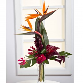 Exotic Bouquet, LT#EE301 Exotic Bouquet