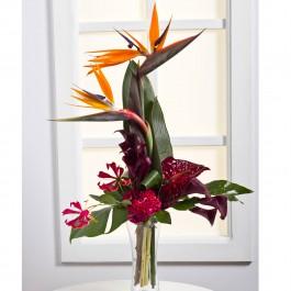 Exotic Bouquet, LT#EE301 Exotic Bouquet