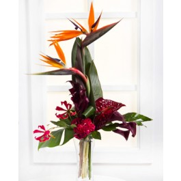 Exotic Bouquet, LV#EE301 Exotic Bouquet