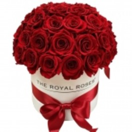Box with 41 red roses, Box with 41 red roses