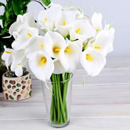 Bouquet of callas, Bouquet of callas
