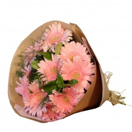 Gerbera Bunch - Pink, Gerbera Bunch - Pink