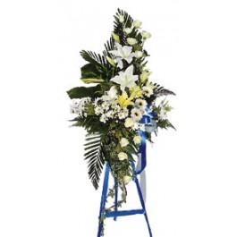 corona mortuoria, MY#3008 corona mortuoria