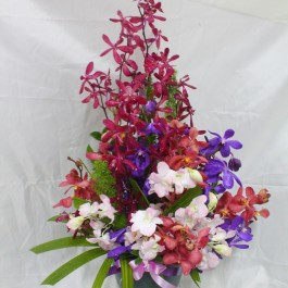 Arrangement with Orchids, Arrangement with Orchids