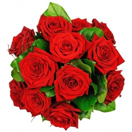 12 red roses -  longstemmed, 12 red roses -  longstemmed