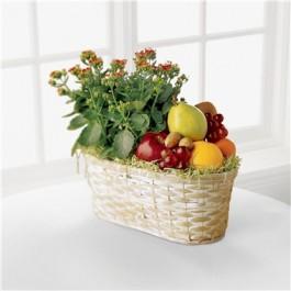 Frutas y Flores, NI#C32-2996 Frutas y Flores