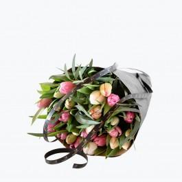Pastel Tulips, Pastel Tulips