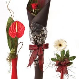 Single flowers - wrapped, NZ#SG411A Single flowers - wrapped