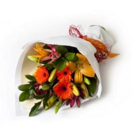 Simply Seasonal, NZ#SG415 Simply Seasonal