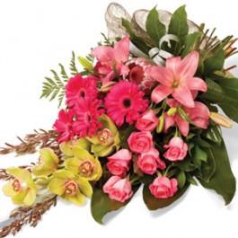 Special Memory, NZ#SG428 Special Memory