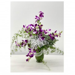 Sonia's small Orchid in vase, Sonia's small Orchid in vase