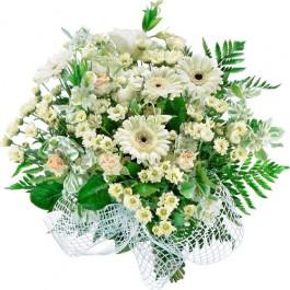 Kwiaty Mimoza, PL#1407 Kwiaty Mimoza
