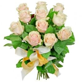 Kwiaty Blask Poranka, PL#24013 Kwiaty Blask Poranka