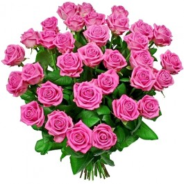 Kwiaty Różany poemat, Kwiaty Różany poemat