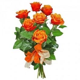 7 rosas de tallo medio, PL#7RM 7 rosas de tallo medio