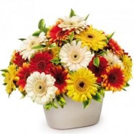 Centro de flor Cortada, PL#ACF Centro de flor Cortada