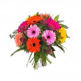 Bouquet of multicoloured Gerbera Daisies, Bouquet of multicoloured Gerbera Daisies