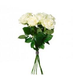 Bouquet White Roses, SE#1201209 Bouquet White Roses