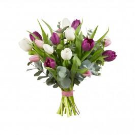 Tulip bouquet, Tulip bouquet