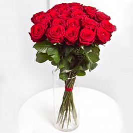 Twenty Five Short Stem Roses, Twenty Five Short Stem Roses
