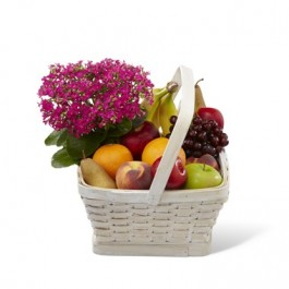 Garden Paradise Basket, UY#C30-4929 Garden Paradise Basket