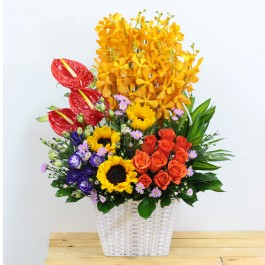 Stunning mixed colour arrangement, Stunning mixed colour arrangement
